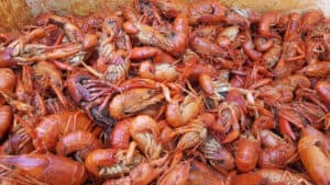crawfish cooked | campbell county chamber of commerce