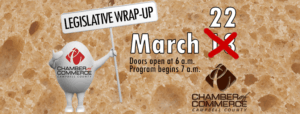 legislative wrap up march 15